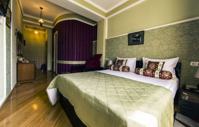 Single room (standard) David Sultan Hotel