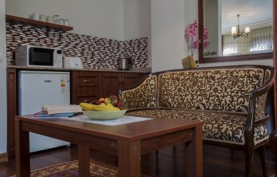 Chambre Tashkonak Studio Suites