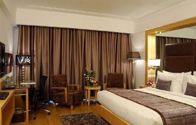 Lords_Plaza_Bangalore-Bengaluru-Room-5-455495.jpg