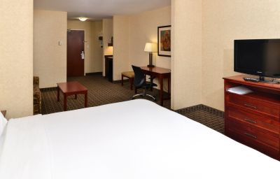 Zimmer Holiday Inn Express & Suites EDMONTON NORTH