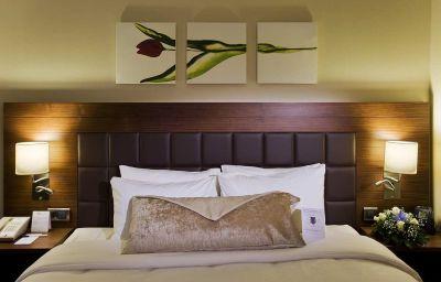 Hilton_Garden_Inn_Kutahya-Kutahya-Room-2-456610.jpg