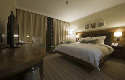Hilton_Garden_Inn_Krakow-Krakow-Room-2-456615.jpg
