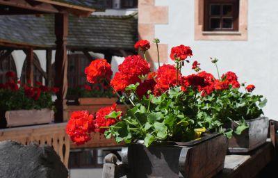 Schloss_Matzen-Reith_im_Alpbachtal-Hotel_outdoor_area-1-463343.jpg