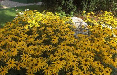Sonnenhof_im_Gruenen-Timelkam-Garden-2-465525.jpg