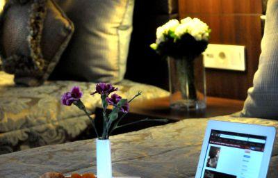 Rhiss_Maltepe_at_Anatolia_-side-Istanbul-Business_room-2-534714.jpg