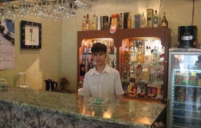 RADDUS_JSS_HOTEL-Tashkent-Hotel_bar-535018.jpg