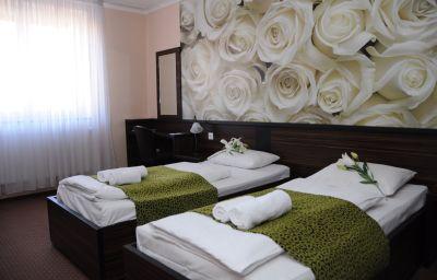 Habitación doble (estándar) Green Budapest