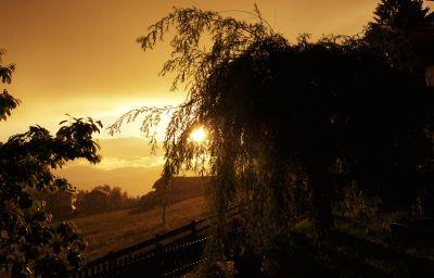 Latemar-Renon-Garden-3-539264.jpg
