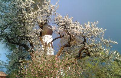 Jardin Latemar
