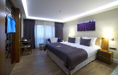 Camera doppia (Standard) Taba Luxury Suites Istanbul (İstanbul)