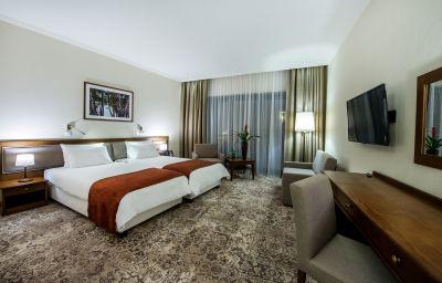 Double room (standard) Hotel Arłamów