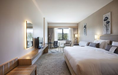 Suite Junior Dedeman Park Denizli Denizli (Denizli)