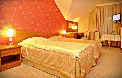 Hotel_Fajkier_Wellness_Spa-Kroczyce-Double_room_standard-2-550534.jpg
