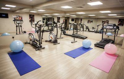 Fitness room Golden Way Hotel Giyimkent Istanbul (İstanbul)