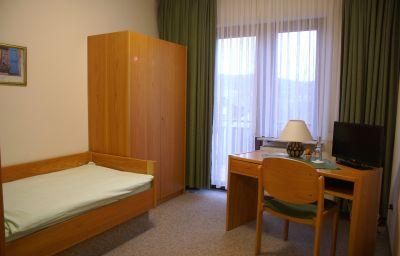 Landhotel_Gasthaus_Altenburg-Niedenstein-Single_room_standard-1-637574.jpg