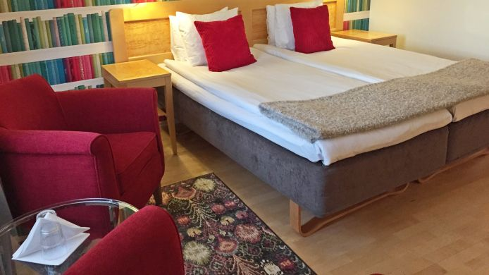 Double room (standard) Mora Hotel & Spa