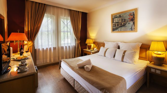 Double room (superior) Polat Thermal Hotel
