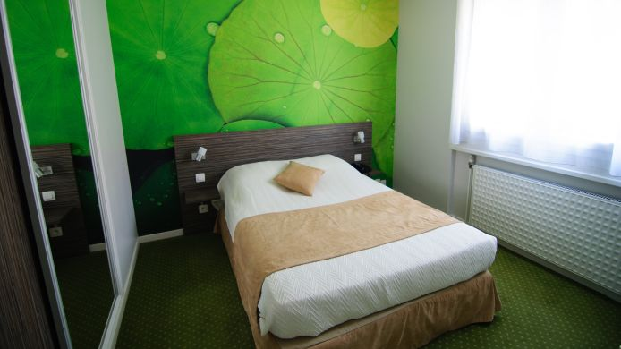 Double room (standard) Inter-Hotel Dau-Ly