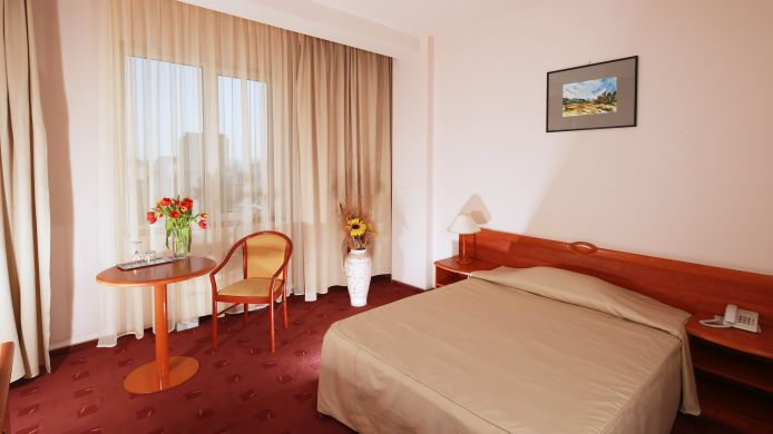 Single room (standard) Ana Airport Hotel