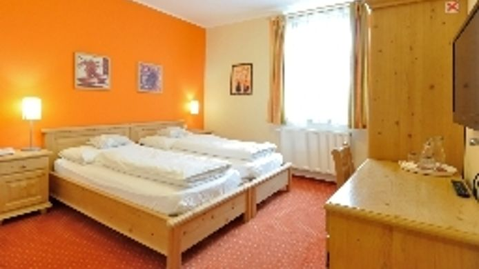 Double room (standard) Zlata Lipa Wellness