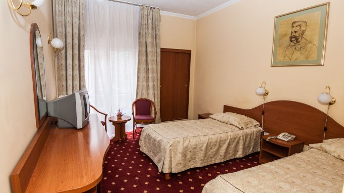 Double room (standard) Johann Strauss