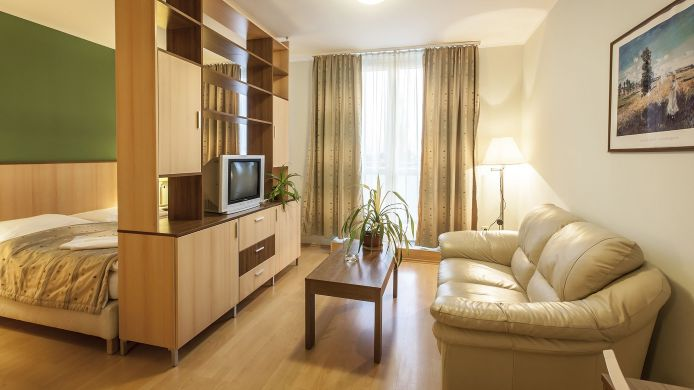 Double room (standard) Premium Apartment