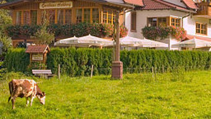 Exterior view Hohberg Gasthaus - Pension