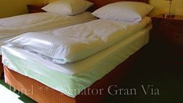 Single room (standard) Senator Gran Via