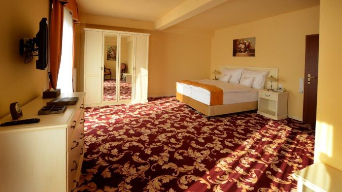 Double room (standard) Spa Hotel Vita