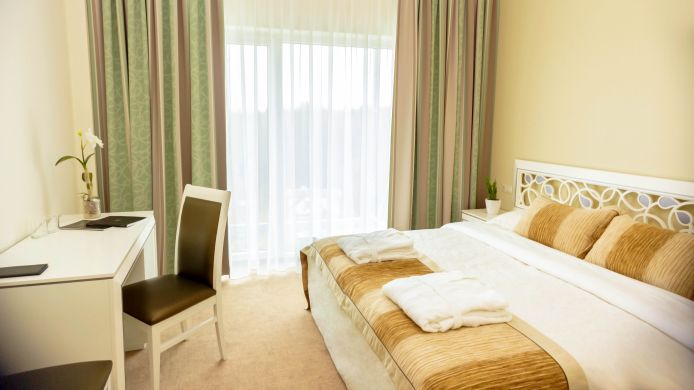Double room (standard) Noorus SPA Hotel