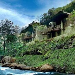 Bien-être Maya Ubud Resort & Spa