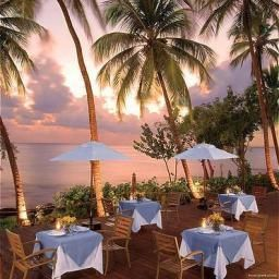 Restaurant Dreams La Romana