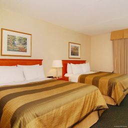 Room BEST WESTERN PLUS Brampton
