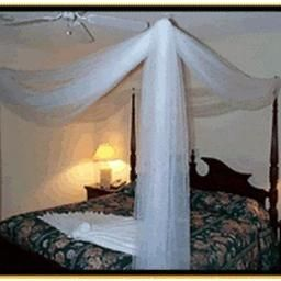 Chambre Tropical Mansion Suites