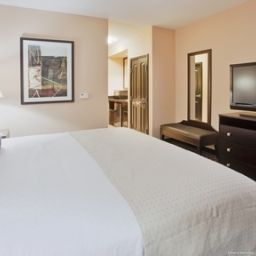 Chambre Holiday Inn ARLINGTON NE-RANGERS BALLPARK