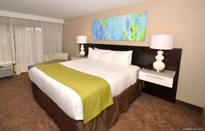 Room RADISSON ORLANDO CELEBRATION Orlando (Florida)