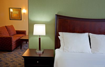 Suite Holiday Inn Express ALBANY WESTERN AVE UNIVERSITY Albany (New York)