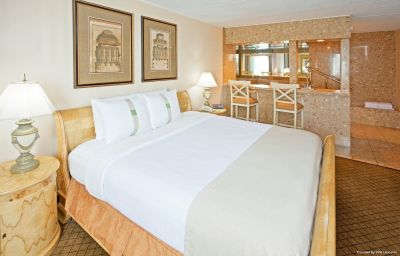 Suite Holiday Inn CARTERET RAHWAY Carteret (New Jersey)