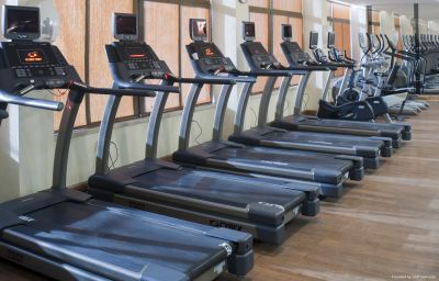 Wellness/fitness Crowne Plaza AMMAN Amman (ʿAmmān)