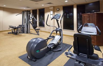 Wellness/fitness Holiday Inn DENVER-PARKER-E470/PARKER RD Parker (Colorado)