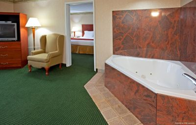 Suite Holiday Inn Express & Suites WOODBRIDGE Woodbridge (New Jersey)