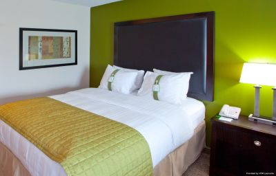 Zimmer Holiday Inn MANASSAS - BATTLEFIELD