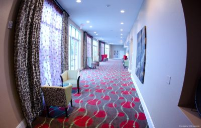 Hall Holiday Inn CHATTANOOGA - HAMILTON PLACE Chattanooga (Tennessee)