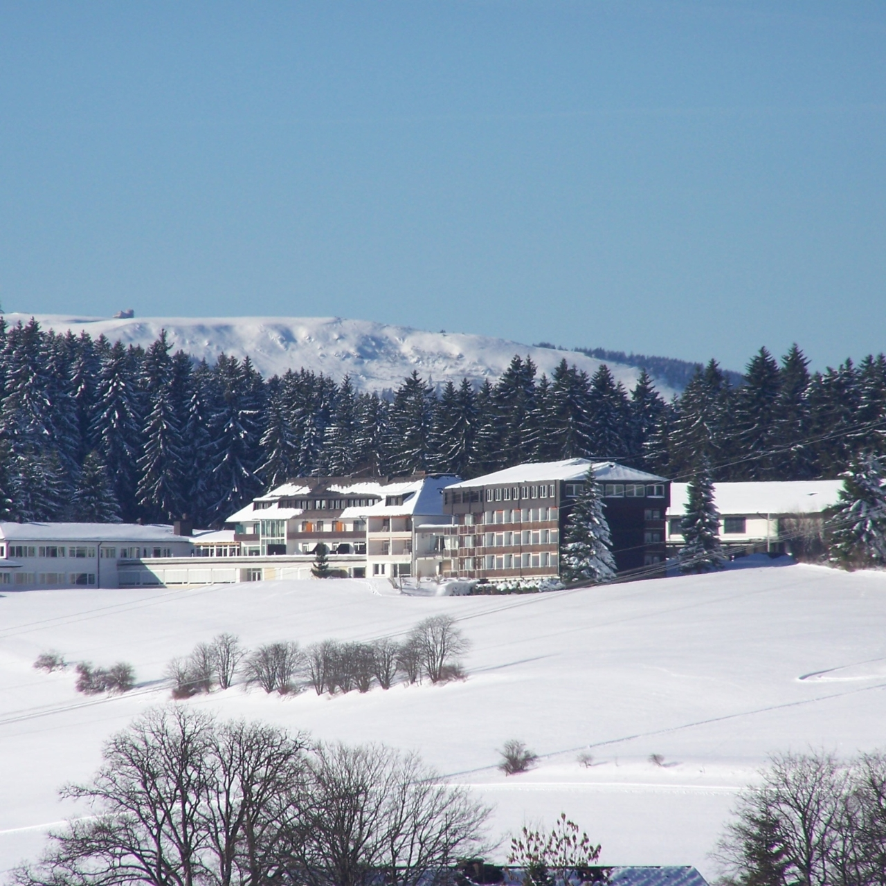 Hotel Saigerhoh 4 Hrs Star Hotel In Titisee Neustadt Titisee Baden Wurttemberg