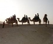 Photo of the hotel Negev Camel Ranch