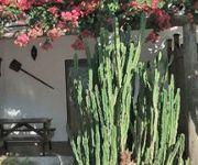 Photo of the hotel Hacienda Sajorami
