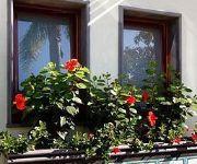 Comfort Hotel Gardenia