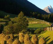 Bauernhof Hoisnhof - Urlaub am Bauernhof - Gries im Sellrain