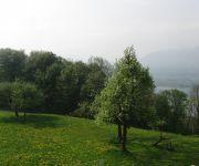 Bauernhof Ferienhof Gassner