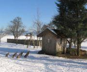 Bauernhof Wesl - Ferienwohnungen